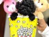 Black Toy Poodle Yavrular