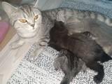 2 tane yavrumuz var!!